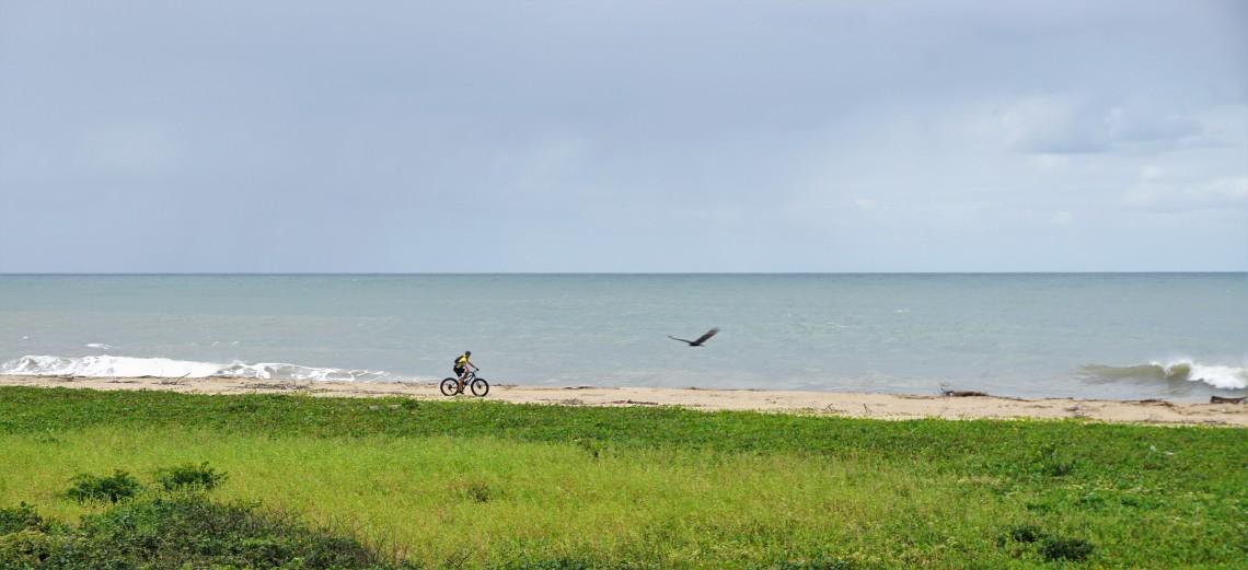 Restinga e o Mar