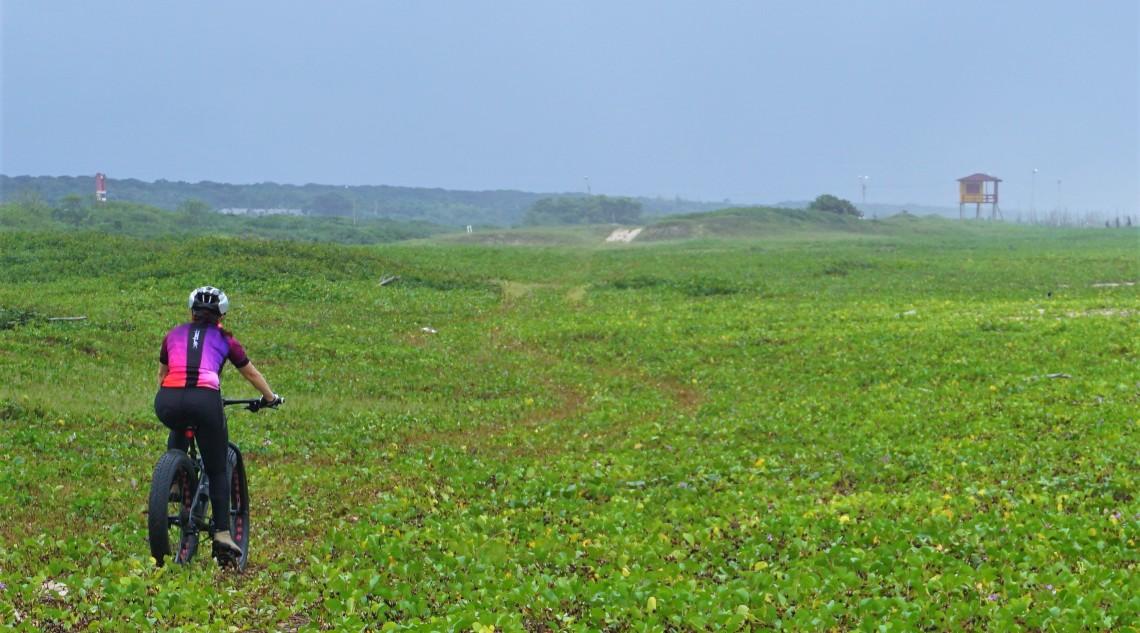 Trilha Araquari