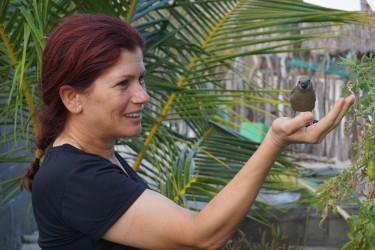Pipira, o passarinho de estimação, comendo mirim